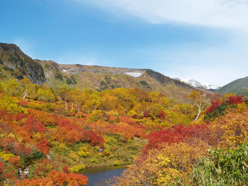 日本 で 一番 紅葉 が 早い 大雪山 その 紅葉 の 名所 ...