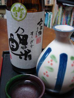 0912sake_sushi00