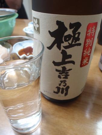120101yoshinogawa