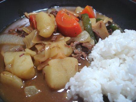 1309langdog1480_2_curry