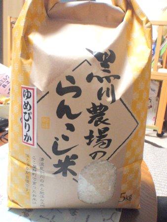 1409rankoshi_shinmai2405
